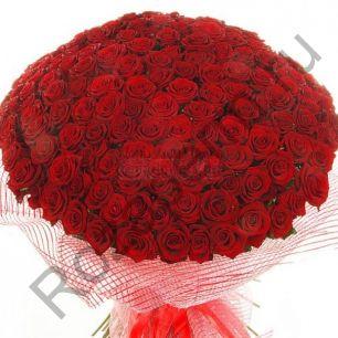 201 роза. Любой цвет.